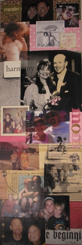 Sandra's Life #112 | 10 x 30